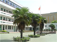 南京陆军指挥学院自考《法律》专升本广州班