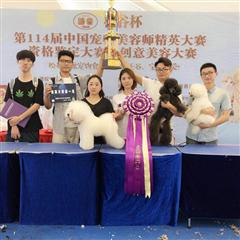 上海宠物美容初级1个月速成培训班