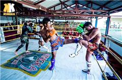 广州IFA泰拳教练员初级认证培训