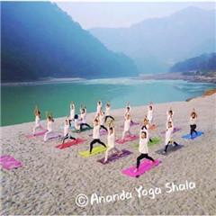 阿南达印度流瑜伽RYT200教练培训认证