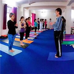 印度瑜伽游学