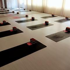 佛山会员私教瑜伽课程专业培训