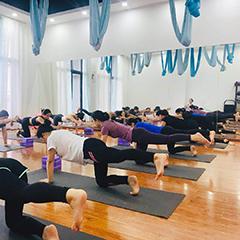 佛山空中瑜伽教练培训班课程