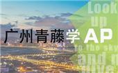 广州学AP哪些课程比较好