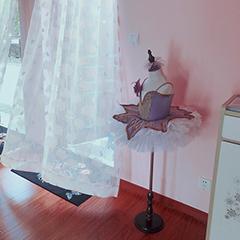 上海成人形体芭蕾舞蹈培训班课程