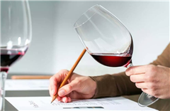 东莞WSET一级葡萄酒国际认证培训课程