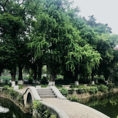 惠州桥东校区