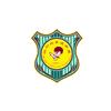 佛山林轩跆拳道培训中心
