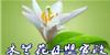 鞍山木蘭花母嬰家政服務咨詢中心