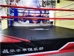 广州成人泰拳自由搏击训练班