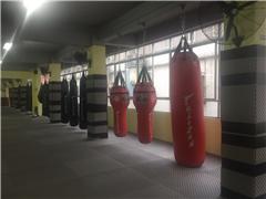 广州综合格斗MMA培训班