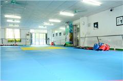 广州跆拳道青少年培训班