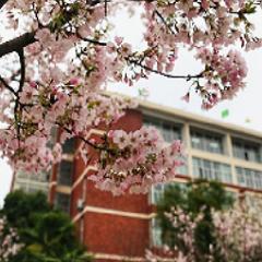 武汉韩国留学服务培训课程