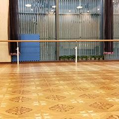 沈阳成人中国舞培训班