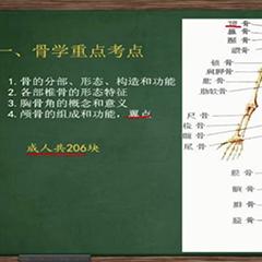 北京外国语大学网络教育专升本长沙招生简章