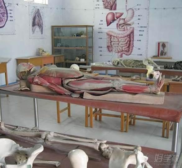 解剖实验室