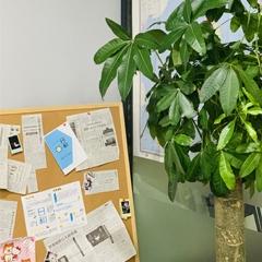 杭州日本东京大学本科留学申请
