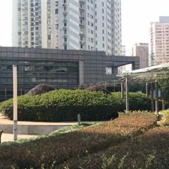 上海早教专业培训班