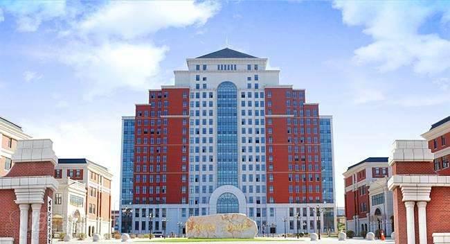 遼寧理工學院