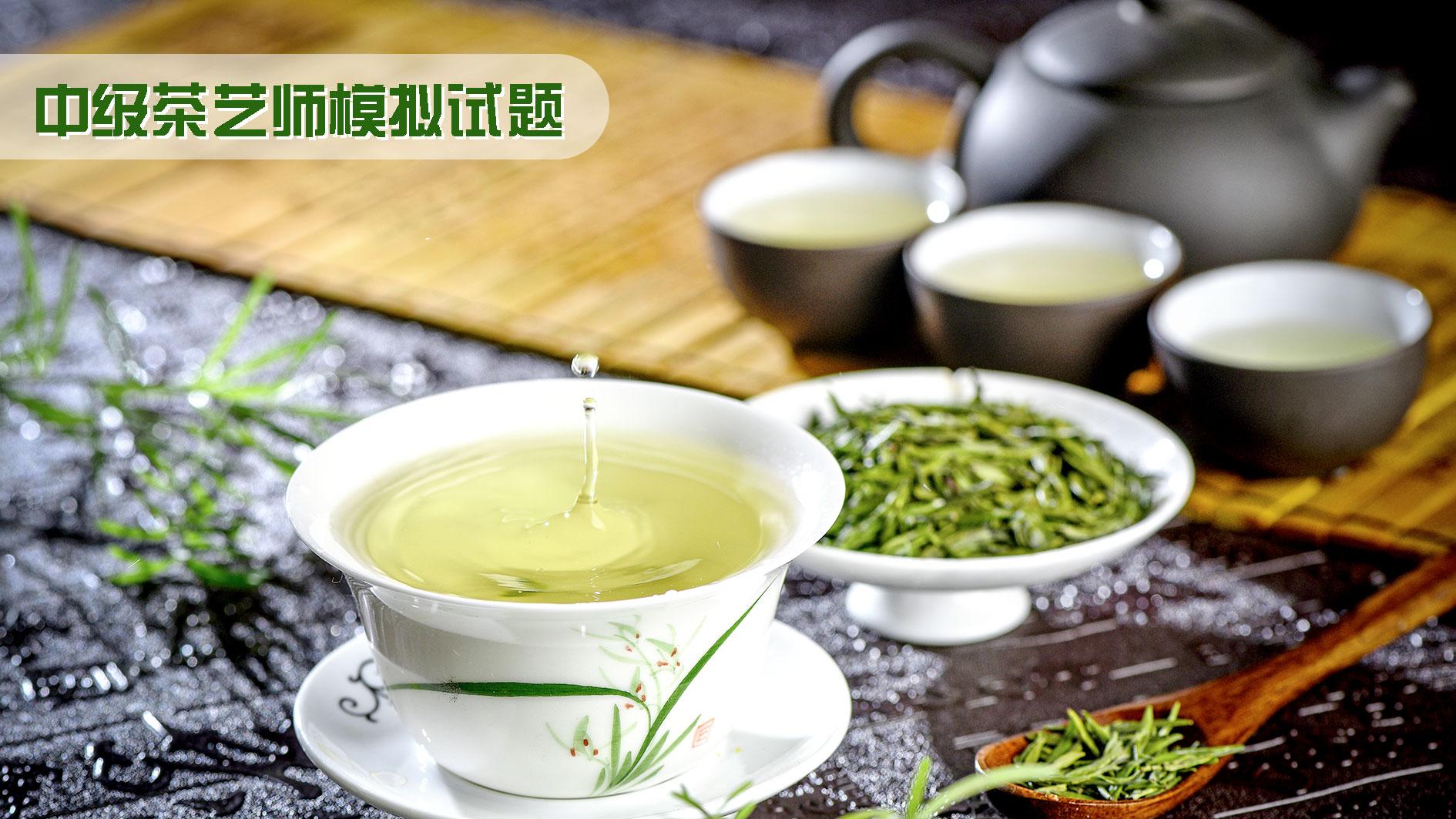 广州茶艺师培训班