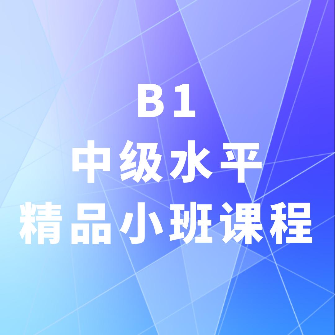 俄语培训B1(中级水平)精品小班课程