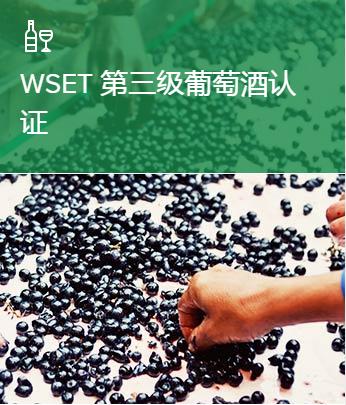上海三级葡萄酒认证培训班