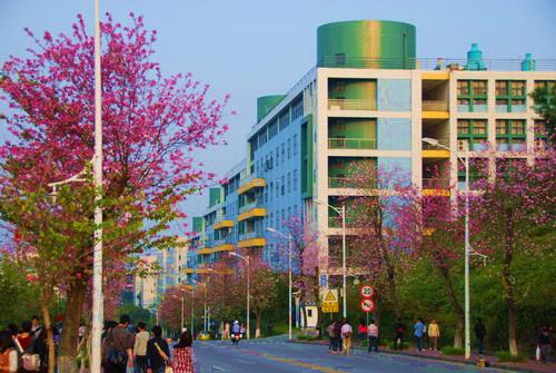 華南農業大學成人高考招生簡介