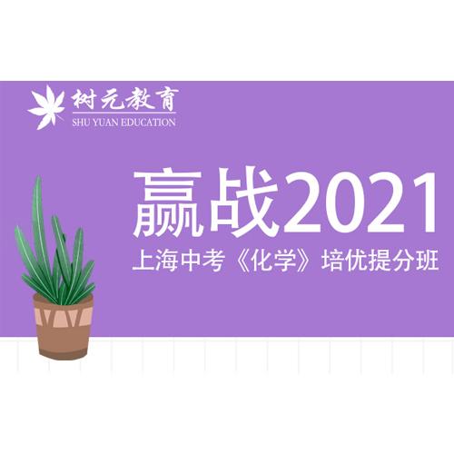 上海中考化学培优提升班可一对一