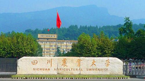 四川农业大学成人高考招生简章