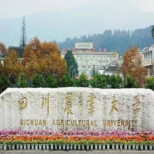 四川農業大學網絡教育專升本北京班招生