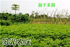 阳光农庄—活力游