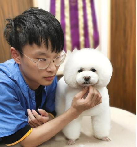 上海宠物门店B级精修班