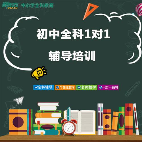 深圳初中全科1对1辅导培训