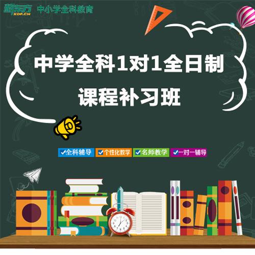 深圳中学全科1对1全日制课程补习班