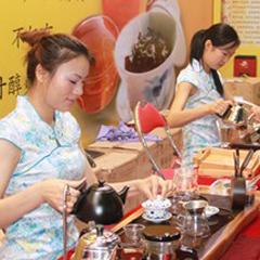 广州中级茶艺师培训班