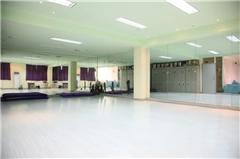 广州少儿舞蹈儿童舞培训班(一二三级)