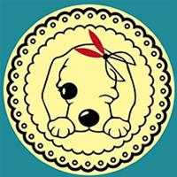 南陽艾迪寵物美容培訓學校