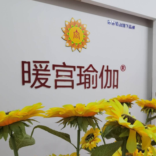 广州体型调理矫正康复瑜伽练习课程