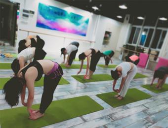 广州瑜伽舞蹈全科会员培训班