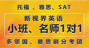 广州韦文新视界教育
