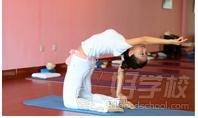亚美瑜伽学校师资